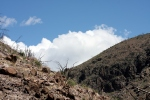 053014 Dome Trail  (9)