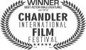 best-actor-male-chandler